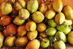 Coconuts fruit shop Royalty Free Stock Images