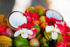 Coconuts, fruits and tropical flowers Stock Image