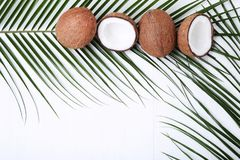 Coconuts with green leaf. On white wooden table Stock Images