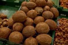 Coconuts at grocery store or market Stock Image
