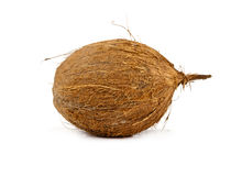 Coconuts isolated Stock Images
