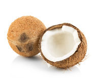 Coconuts isolated on white. Background Stock Image