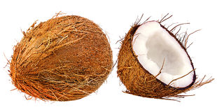 Coconuts isolated on white Royalty Free Stock Image
