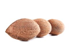 Coconuts. Isolated on a white background Stock Photography