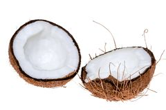 Coconuts isolated on the white background. The tropical fruit coconuts isolated on the white background Stock Photo