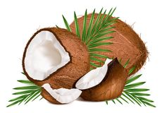 Coconuts with leaves and slice. Royalty Free Stock Image