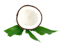 Coconuts with leaves on white background Stock Photography