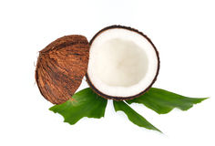 Coconuts with leaves on white background Royalty Free Stock Photo
