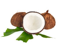 Coconuts with leaves on white background Royalty Free Stock Image