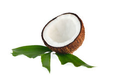 Coconuts with leaves on white background Stock Images