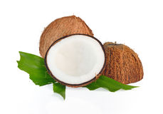 Coconuts with leaves on white background Stock Image