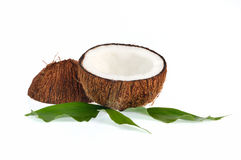 Coconuts with leaves on white background Royalty Free Stock Photography