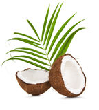 Coconuts with leaves Royalty Free Stock Photo