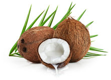 Coconuts with leaves on a white background. Close up Stock Image