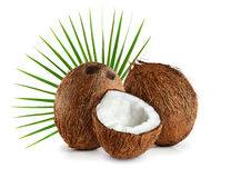 Coconuts with leaves on a white background. Close up Stock Photos
