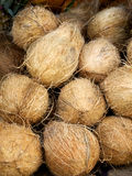 Coconuts on the market. Close-up of coconuts on the market Stock Image