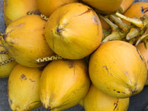 Coconuts on the market. Close-up of coconuts on the market Royalty Free Stock Photo