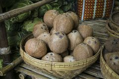 Coconuts on the market, Myanmar, Asia. Coconuts on the market, close up view, Myanmar, Asia Stock Image