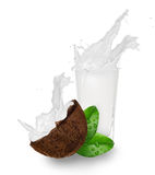Coconuts with milk splash Royalty Free Stock Photography