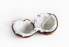 Coconuts with milk splash Stock Photos