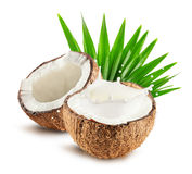 Coconuts with milk splash and leaf isolated on white background.  Royalty Free Stock Photo