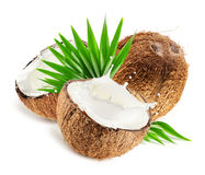 Coconuts with milk splash and leaf isolated on white background Stock Images