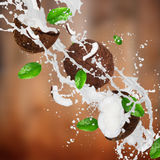 Coconuts with milk splash over dark brown background. Freeze motion Stock Photo