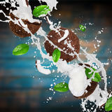 Coconuts with milk splash over wooden background. Royalty Free Stock Photos