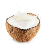 Coconuts with milk splash on white background Stock Image