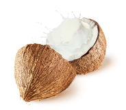 Coconuts with milk splash on white background Royalty Free Stock Photos