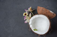 Coconuts with mint and orhid flowers, on dark background. Copy space. Stock Photography