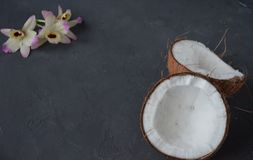 Coconuts with mint and orhid flowers, on dark background. Copy space. Royalty Free Stock Photo