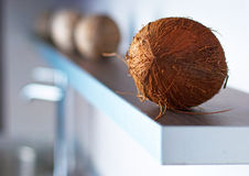 Coconuts on modern white kitchen. Brown coconuts on modern white kitchen Royalty Free Stock Photo