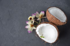 Coconuts with orhid flowers on dark background. Copy space. Royalty Free Stock Photo