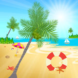 Coconuts and other beach elements on sea shore Stock Photos