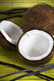 Coconuts. A pair of two coconuts Royalty Free Stock Photos