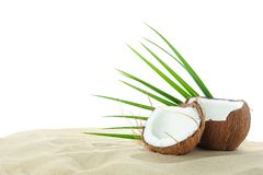 Coconuts and palm leaf on clear sea sand isolated on white background. Summer vacation stock photography