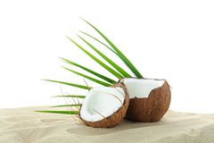 Coconuts and palm leaf on clear sea sand isolated on white background. Summer vacation stock images