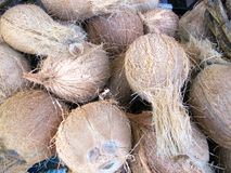 Coconuts. A pile of coconuts at at fresh market in the tropical city of Cairns, which is located in Queensland, Australia Stock Image