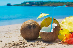 Coconuts and pineapples on the sand. By the sea Royalty Free Stock Photo
