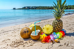 Coconuts and pineapples by the sea Royalty Free Stock Photo