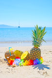 Coconuts and pineapples by the shore Stock Photography