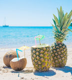 Coconuts and pineapples by the shoreline Stock Image