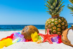 Coconuts and pineapples on a tropical beach Stock Images