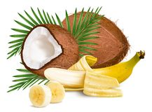 Coconuts and ripe yellow bananas Royalty Free Stock Photos