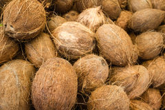 Coconuts for sale at they Haymarket, Boston. The Haymarket in Boston is a popular place to score some great food on Saturdays Royalty Free Stock Image