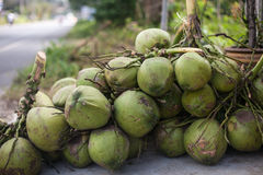Coconuts for sale Royalty Free Stock Photo