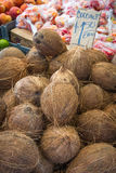 Coconuts for sale at a local market Stock Image