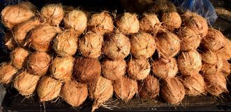 Coconuts for sale in Sri Lanka Royalty Free Stock Images