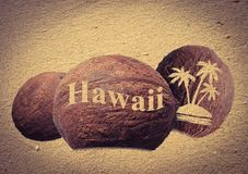 Coconuts in the sand. Coconuts with an engraving in the sand Royalty Free Stock Image
